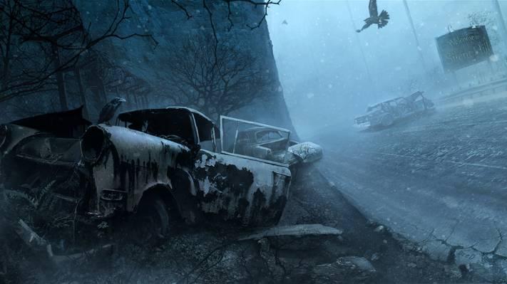 鸟,夜,雪,冬,机,欢迎来到寂静岭,寂静岭