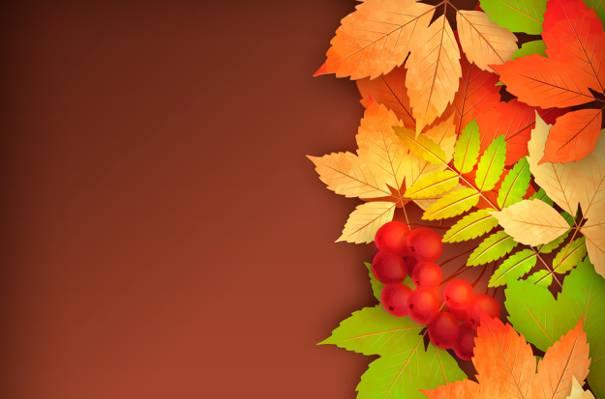 叶,罗文,秋天
