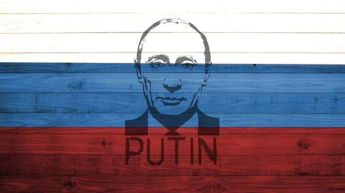 国旗,颜色,木材,总统,白色,蓝色,俄罗斯,普京,红色