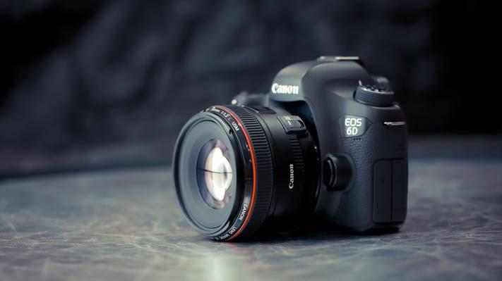 微距,相机,佳能EF 50mm f1.2L USM,背景