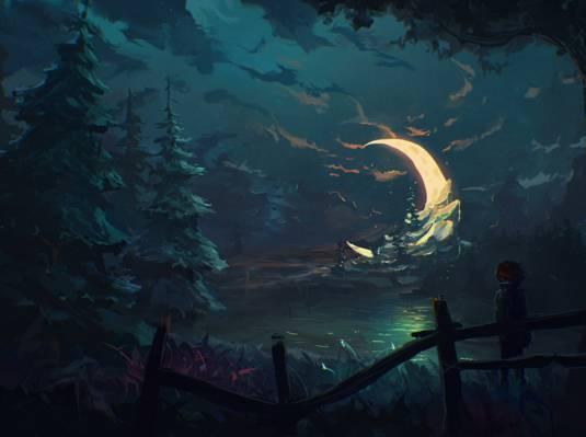 男孩,艺术,月亮,围栏,树,夜,月牙,森林