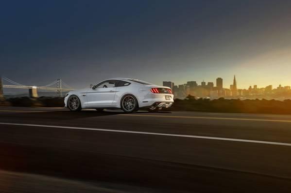 2015年,汽车,肌肉,Vossen,白色,后方,车轮,野马,福特