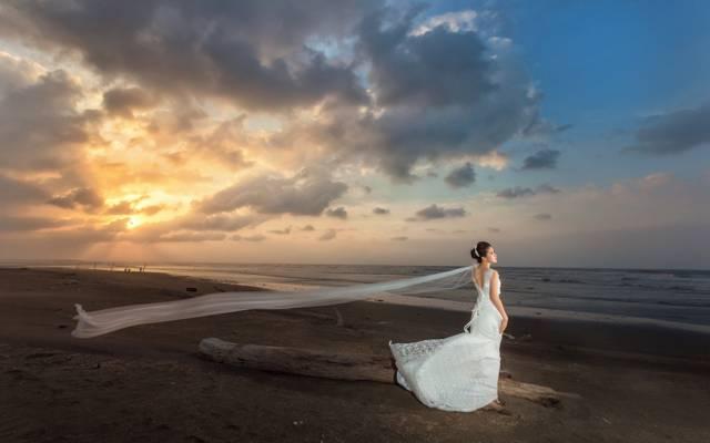 裙子,女孩,岸,风,海