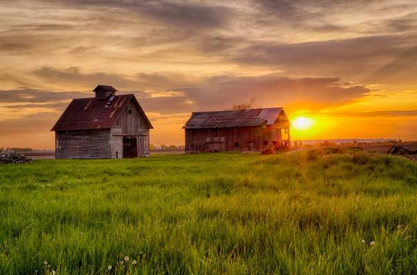 两个棕色的房子,在日落期间的白云下的绿色领域高清壁纸
