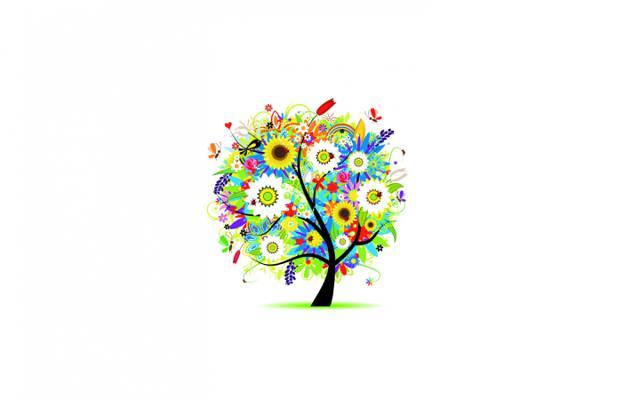 鲜花,心,树,洋甘菊,蝴蝶,芽,郁金香