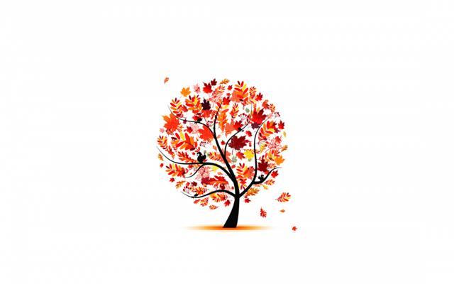 树,鸟,秋天,叶子,亮度