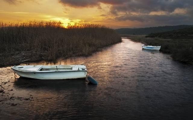 芦苇,小船,河,日落