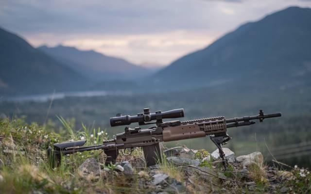 Mk 14,步枪,武器,自动,增强