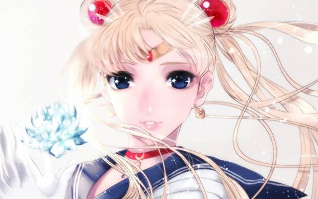Bishoujo senshi水手月亮,水手月亮,Tsukino Usagi,女孩,水晶
