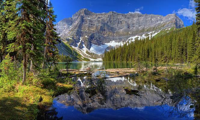 湖,树,雪,天空,山脉