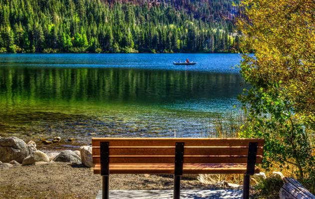 壁纸石头,船,板凳,树,岸,六月湖,湖,CA,森林,美国