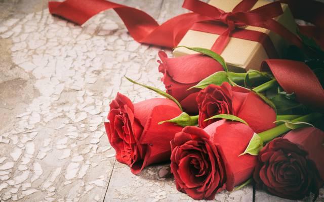 情人节,花,花瓣,爱,玫瑰