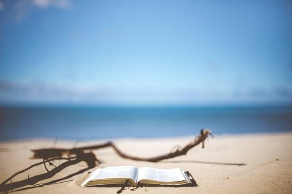 白色书页顶部的棕色沙子高清壁纸
