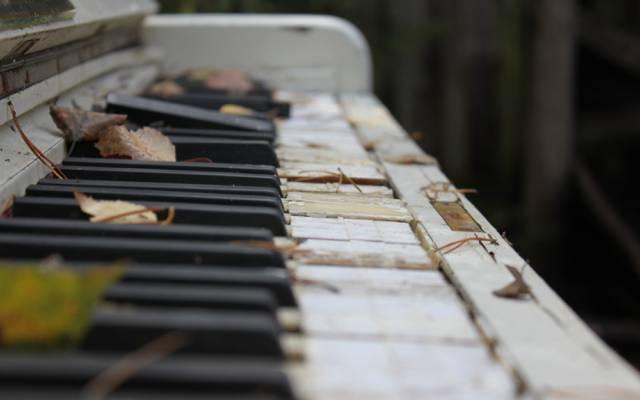 宏,破,旧,叶子,键,乐器,照片,秋季,钢琴