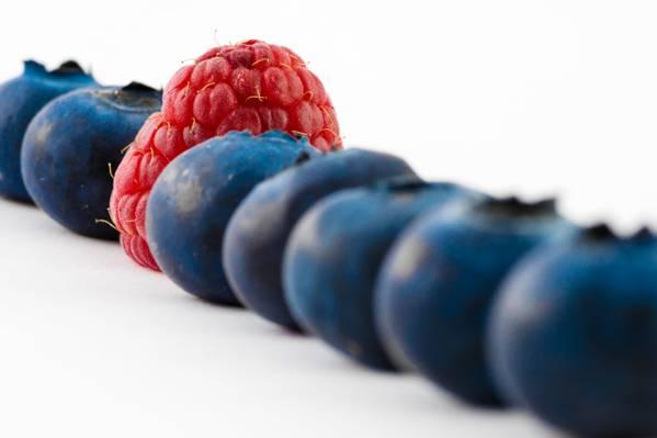 红树莓水果高清壁纸