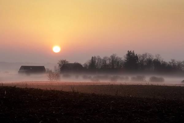 雾,家,领域,景观,日落