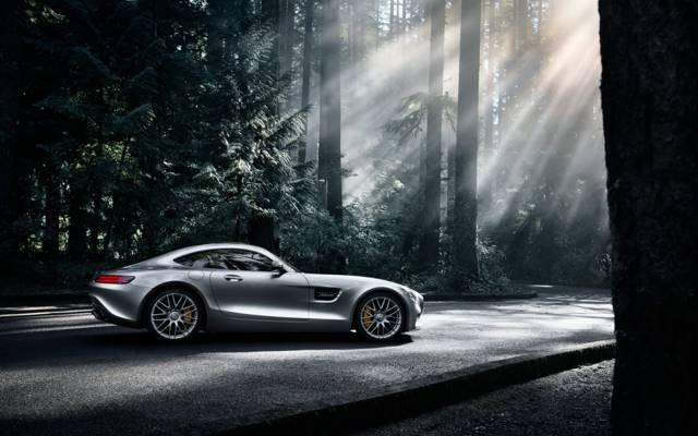 梅赛德斯 - 奔驰,AMG,黑暗,侧面,太阳,GT S,森林,2016年,银色