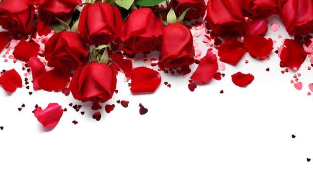 红玫瑰,爱,玫瑰,浪漫,礼物,心,情人节那天,红色,鲜花