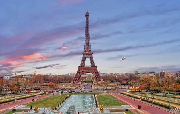 晚上,塔,法国,巴黎,家,天空