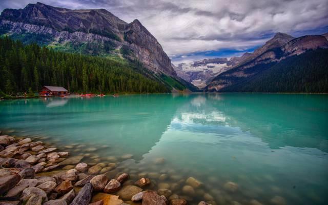 湖,山,加拿大,树木,船屋,景观