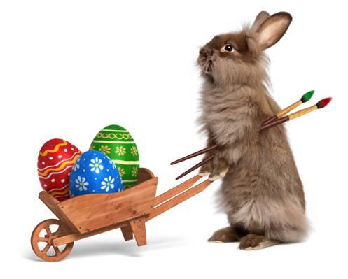 画笔,画,鸡蛋,卡车,复活节,复活节,兔,兔,假期