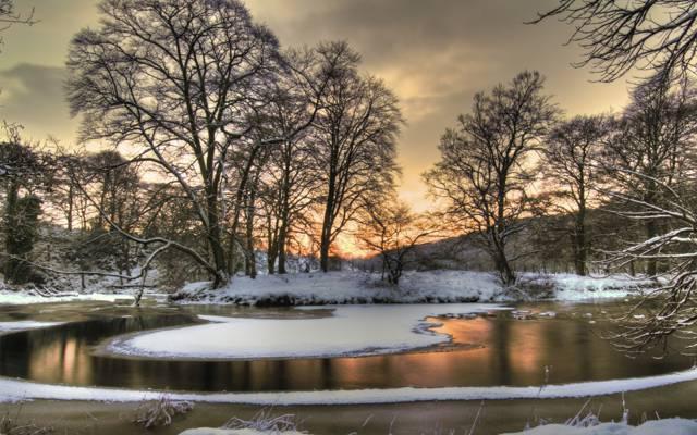 雪,冰,树,季节,树,树,天空,风景,冰,酷,云,自然,查看,不错,好,...
