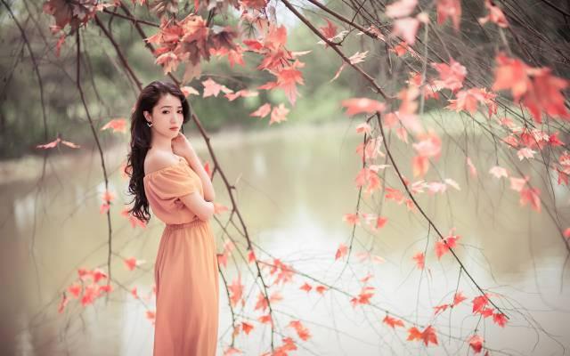 美丽,女孩,性质,亚洲