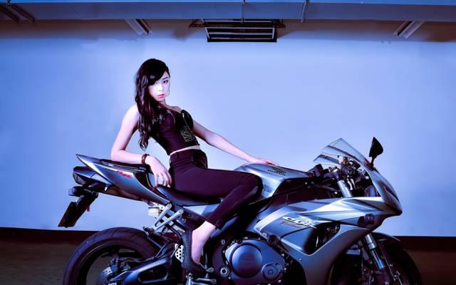 自行车,本田,南希陈,台湾,工作室