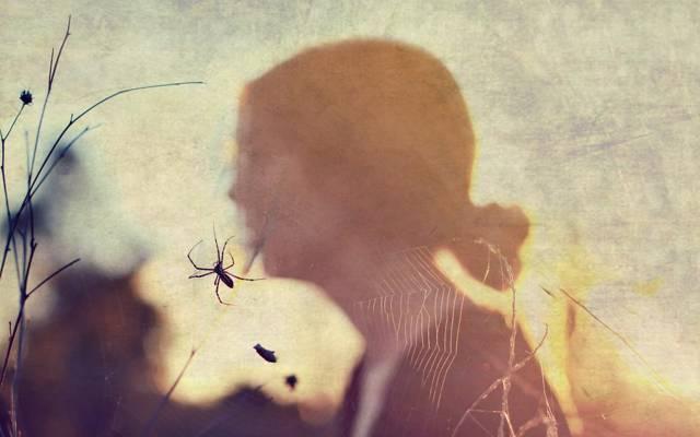 风格,女孩,网站,蜘蛛