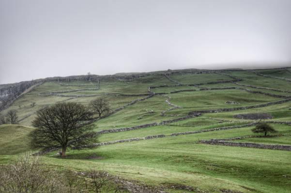 绿色平原的空中照片在灰色云彩HD墙纸下