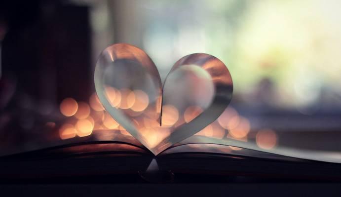 散景,心,页,所有者,书