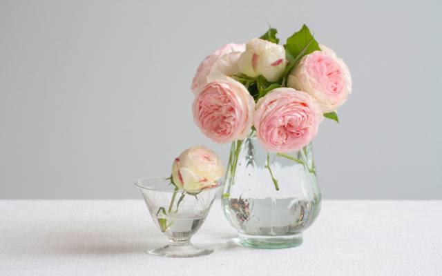 花瓶,花蕾,玫瑰,花束
