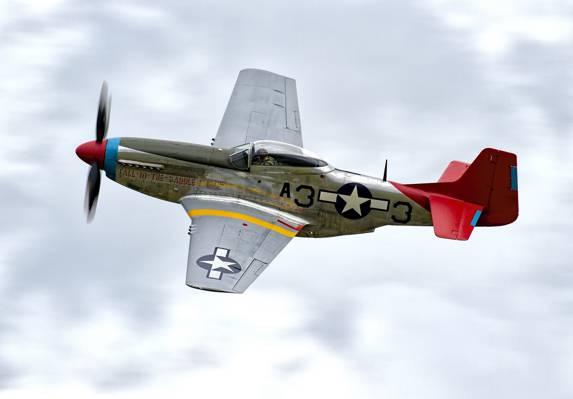 战斗机,第二次世界大战,单体,P-51D,时期,远程