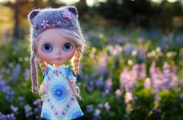 玩具,帽,字段,娃娃,辫子,草,帽子