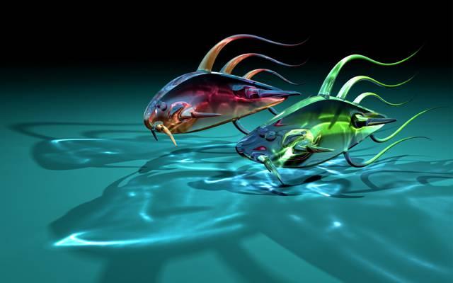 鱼,两个,玻璃,透明,艺术,阴影,鱼