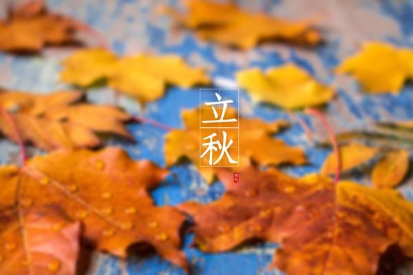 传统节气立秋时节