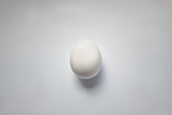 宏,蛋,背景