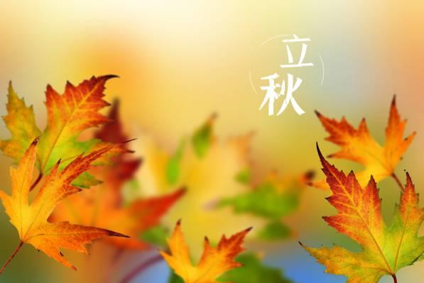 中国传统二十四节气立秋
