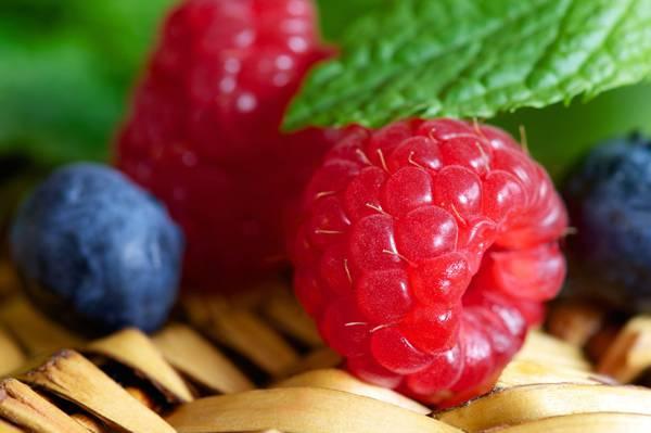 蓝莓,食物,覆盆子,浆果