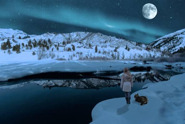 猫在雪地上金色小时高清壁纸的女孩