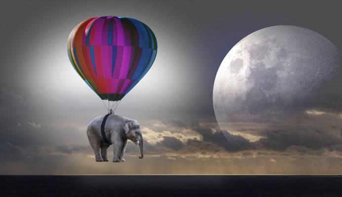 大象的风景照片在夜间高清壁纸挂在热气球上