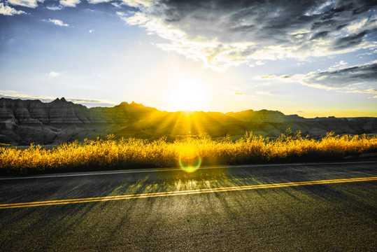 山坡朝阳景色图片