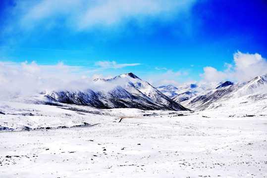 西藏米拉山口景物图片