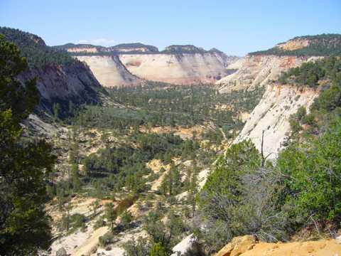 美国宰恩国家公园景象高清图片