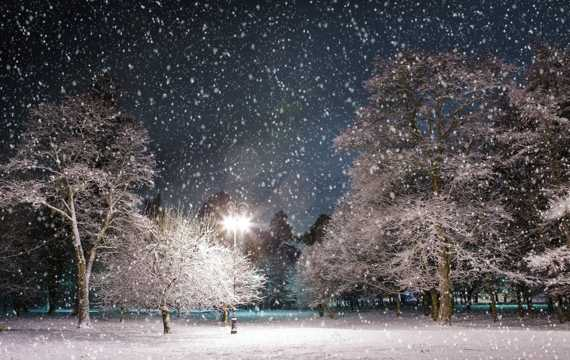 浪漫雪景图片
