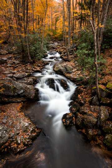 山间湍急溪流图片