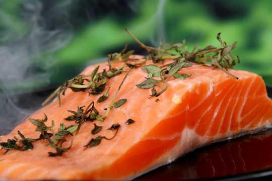 三文鱼肉图片