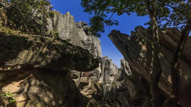 云南昆明石林景物高清图片