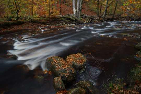 秋日河边唯美图片