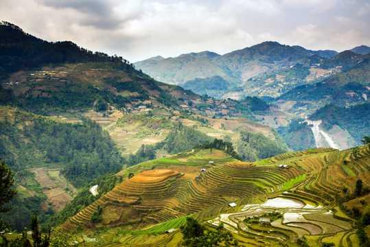 越南梯田景观图片